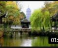 令人唏嘘! 1000年来让西方看不懂的中国园林, 却在慢慢被抛弃! (255播放)