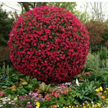 大型户外立体景观花球花柱广场展会绿化专业厂家