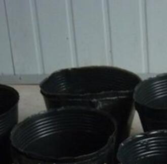 厂家直销营养钵批发营养杯育苗杯育苗袋塑料育苗盆