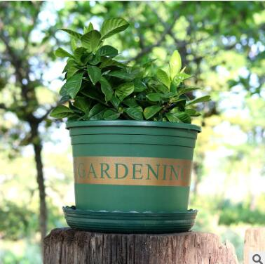 矮胖加仑盆 家庭园艺办公阳台种菜种花盆栽塑料加仑花盆
