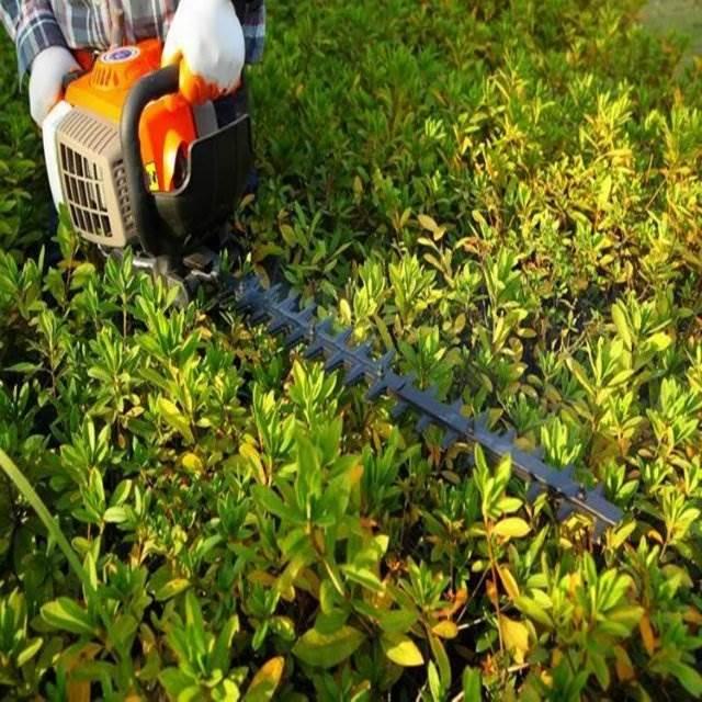 绿篱修剪机