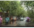 我市园林等部门迅速做好台风后受损设施恢复工作 (37播放)