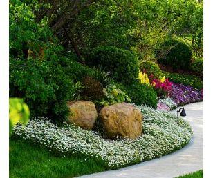 东莞某特色精品村规划策略 建科园林景观设计