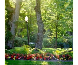 东方园林用景观讲故事,让人们透过美景感受古老的时光