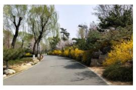 北京市房山区园林绿化局2020年房山区山区生态公益林生态效益促进发展机制森林健康经营(森林防火部分)项目公开招标公告