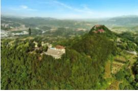 广州天健天玺项目二期工程(多层住宅)大区园林景观工程直接采购公告