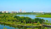 北京市顺义区汉石桥湿地2012年(第四轮)平原造林管护公开招标公告