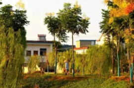 成都兴蓉市政设施管理有限公司绕城内(不含两江环抱区域)市政排水管网重大病害治理工程项目(第四批)施工一标段