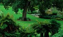 山东省潍坊青州市园林绿化和环卫中心2021年度罩光剂采购项目竞争性磋商